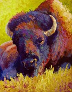 timeless-spirit--bison-marion-rose